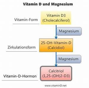 Vitamin D Spiegel Berechnen : 99 best gesundheit images on pinterest health health fitness and healthy living ~ Themetempest.com Abrechnung
