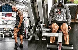 How To Get Muscled With The Rock Workout - CelebNHealth247