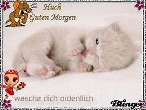 Whatsapp Guten Morgen Bilder Kostenlos : guten morgen animationsbilder zum teilen 120886109 ~ Frokenaadalensverden.com Haus und Dekorationen