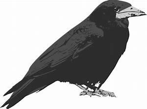 Bird Clip Art at Clker.com - vector clip art online ...