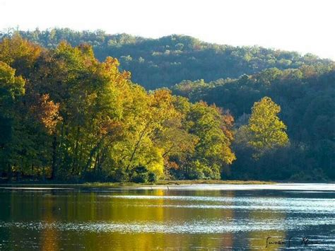 lake killarney   grew   beautiful arcadia