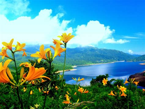 Beautiful Nature Wallpapers New Hd , Hd Wallpapers