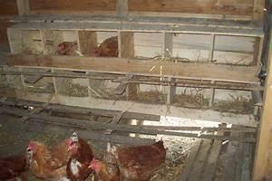 Construire Un Poulailler En Bois : interieur poulailler les poules d 39 aurore ~ Melissatoandfro.com Idées de Décoration