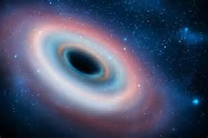 Black Hole Universe