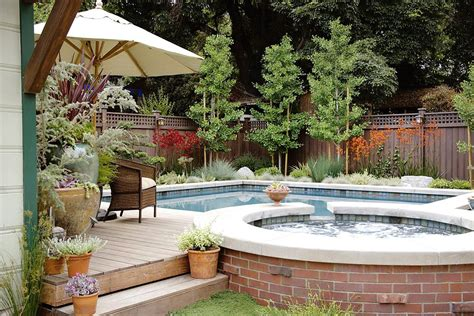 cornwell pool and patio trees swimming pool garden design landscaping for pools