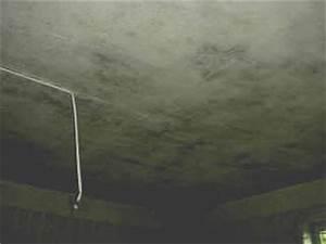 moisissure mur pourqoi que faire la chambre et la salle With moisissure plafond chambre que faire