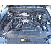 2000 Ford Mustang  Other Pictures CarGurus