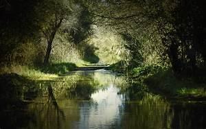 This Is Beautiful River Wallpaper HD Wallpaper