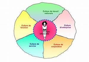 Cultural Convergence Definition Compétence De Culture Professionnelle Définition Degrés