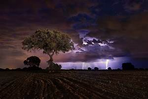 Dark, Landscape, Field, Night, Storm, Sky, Trees, Lightning, Wallpapers, Hd, Desktop, And, Mobile
