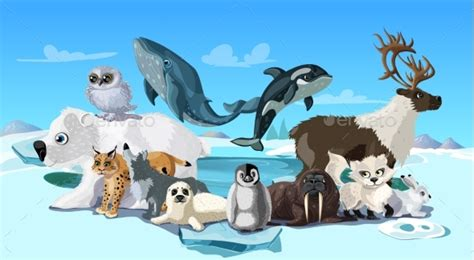 Arctic Animals Cartoon Template By Vectorpot