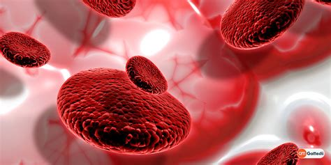 Thalassemia is a group of inherited blood disorders that prevent your body from producing the amount of hemoglobin it needs. Thalassemia: A Rare Blood Disorder Related to Hemoglobin - GoMedii