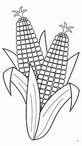 Black And White Corn | www.imgkid.com - The Image Kid Has It!