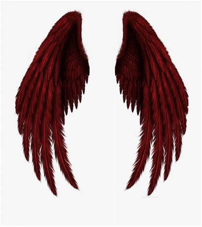 Wings Angel Raven Clip Cartoon Netclipart Insect