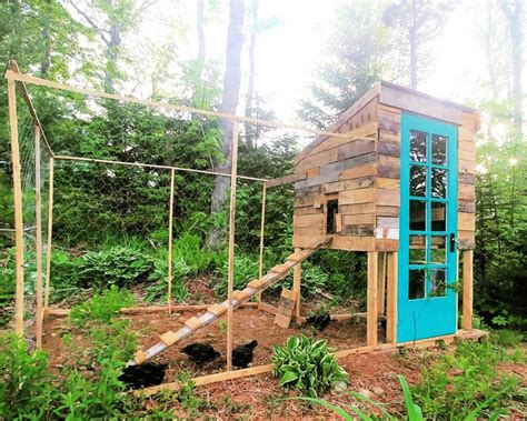 pallet chicken coop plans  save  money  guide