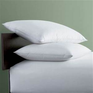 back sleeper medium bed pillows the company store With company store down pillows