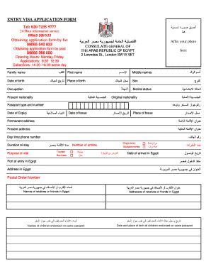 egypt visa application form fill   sign printable