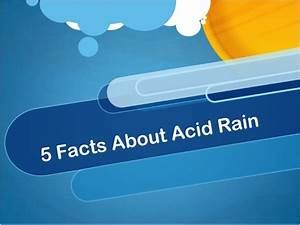 5 Facts About Acid Rain
