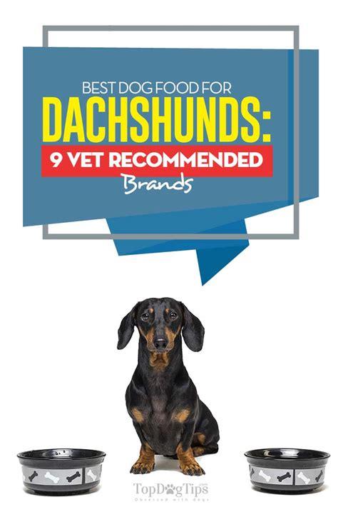 dog food  dachshunds  vet recommended brands