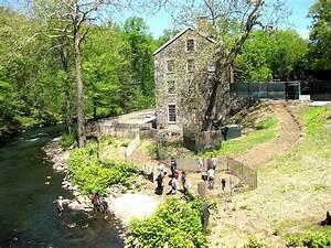Bronx botanical garden by zois shuttie for Botanical garden bronx