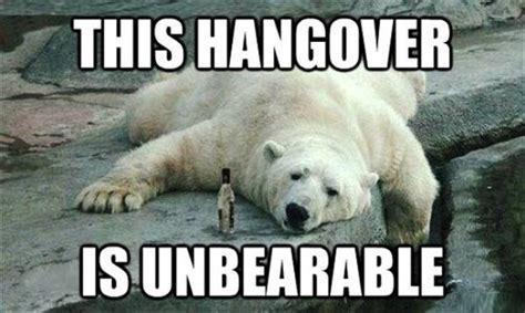 Hung Over Meme - hangover funny meme www pixshark com images galleries