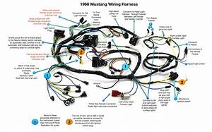 66 Wiring Harness Diagram