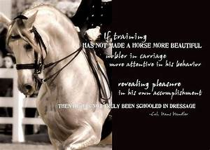451 best images about Riding -quotes on Pinterest ...