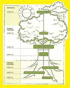 7 Habits Tree Diagram
