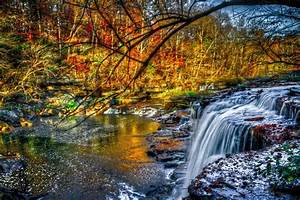 river shoals stones waterfall forest tree yellow