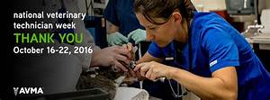 Animal Care Resume Pmc News Pet Medical Center Of Pasco
