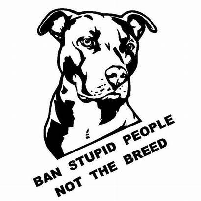 Pitbull Stupid Decals Ban Breed Bull Drawing