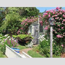 Beautiful Cottages  Rose Cottage, Beautiful, Cottage