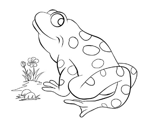 free printable frog coloring pages for 840 | Frog Printable Coloring Pages
