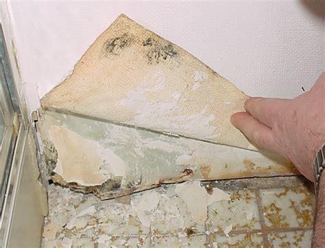 elcosh mold  construction