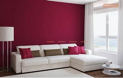 Combination Colour Living Combinations Walls Wall Paint
