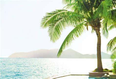 air caraibes reservation si鑒e paxnouvelles vacances air canada des prix alignés avec ceux de la concurrence