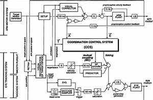 block diagram of the model the lower part shows the eye With and heres the block diagram from the manual showing how those