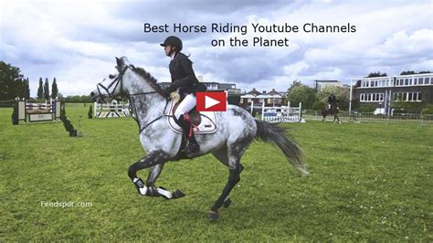 horse riding channels equestrian youtubers