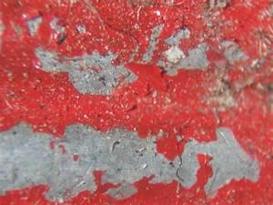 Car Examined Under Microscope