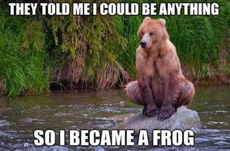 Funny Bear Meme - funny bear they told me i could be anything