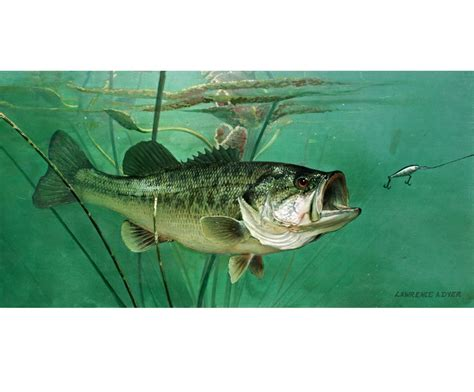 largemouth bass giclee art print canvas from original painting