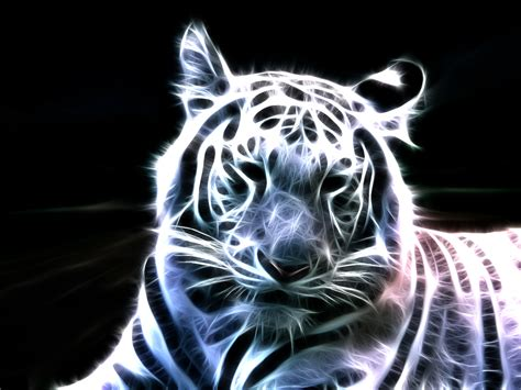 Bright Animal Wallpaper - animals tigers fractalius light painting wallpapers