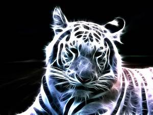 animals, tigers, fractalius, light painting :: Wallpapers