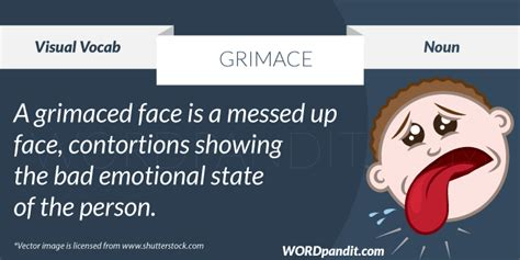 Meaning Of Grimace