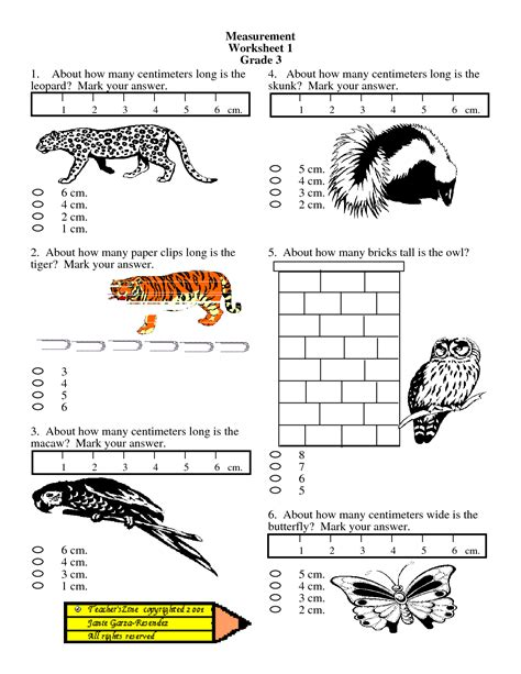 by on ayan measurement worksheets worksheets