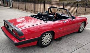 Alfa Romeo Nice : 1989 alfa romeo spider quadrifoglio both tops restored ~ Gottalentnigeria.com Avis de Voitures