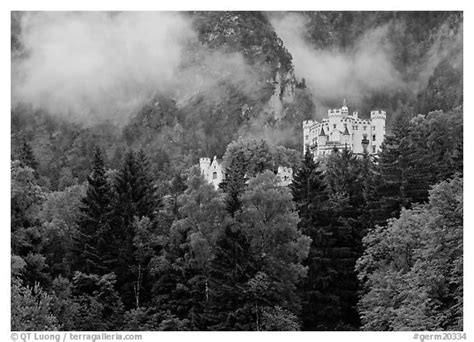 black  white picturephoto hohenschwangau castle