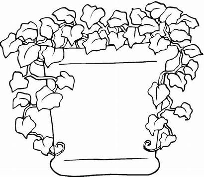 Coloring Plants Pages Sea Vines Leaves Printable