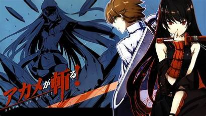 Akame Kill Ga Esdeath Tatsumi Anime Wallpapers