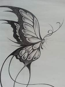 Pencil Sketches Of Butterfly Butterfly Pencil Sketches ...